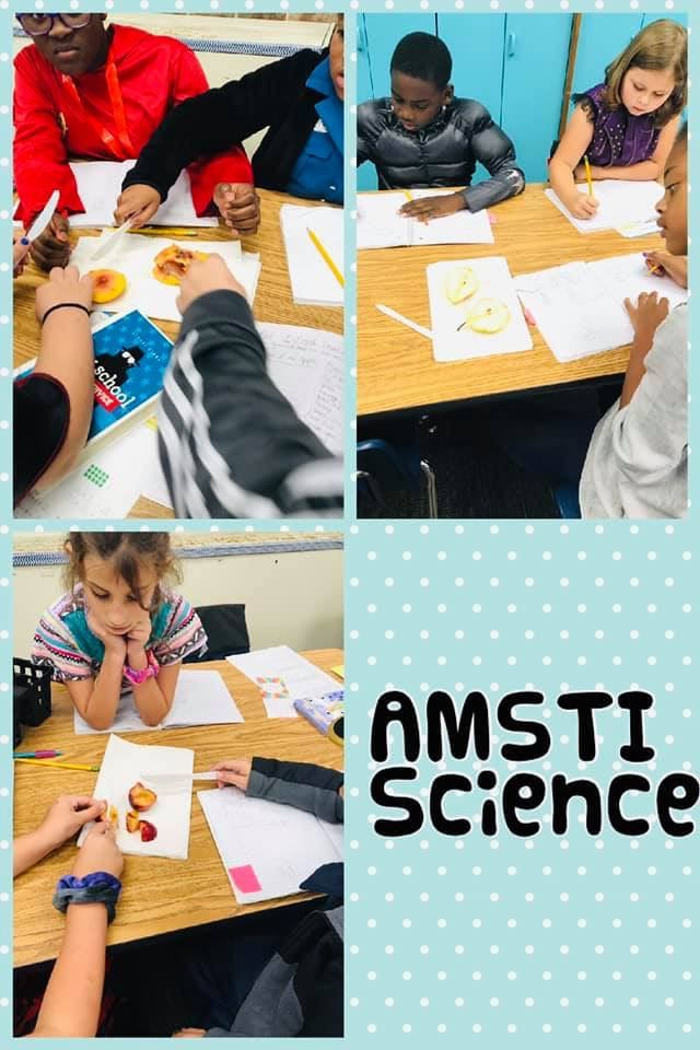 Mrs. Faulk's CREW working on AMSTI Science activities